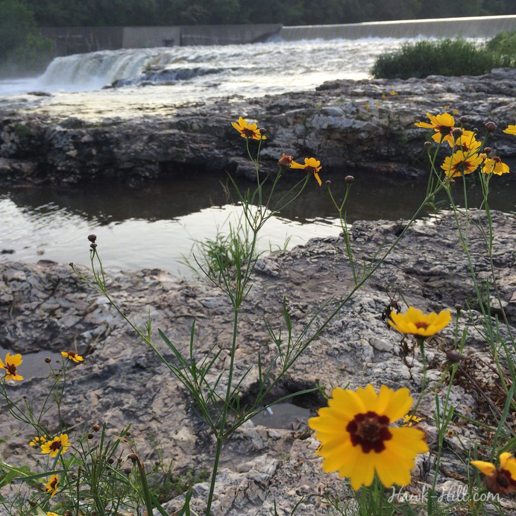 Joplin's grand falls in summer