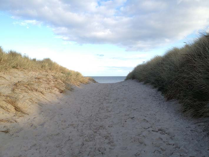 Iconic beach dunes and wexford island have been used for movie backdrops