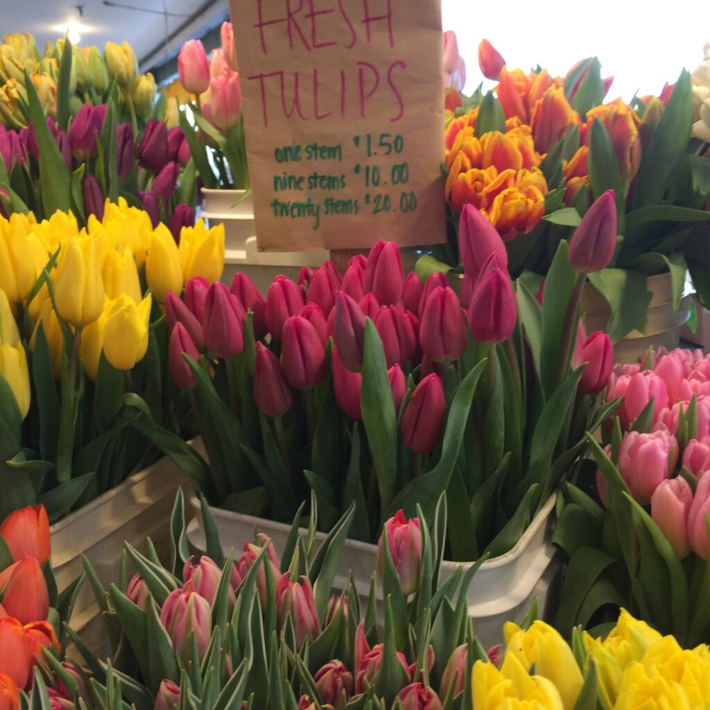 Tulips for sale at pike place market.