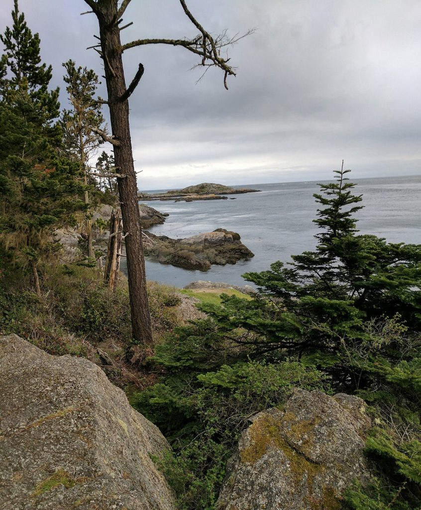 An overlook from lopez island