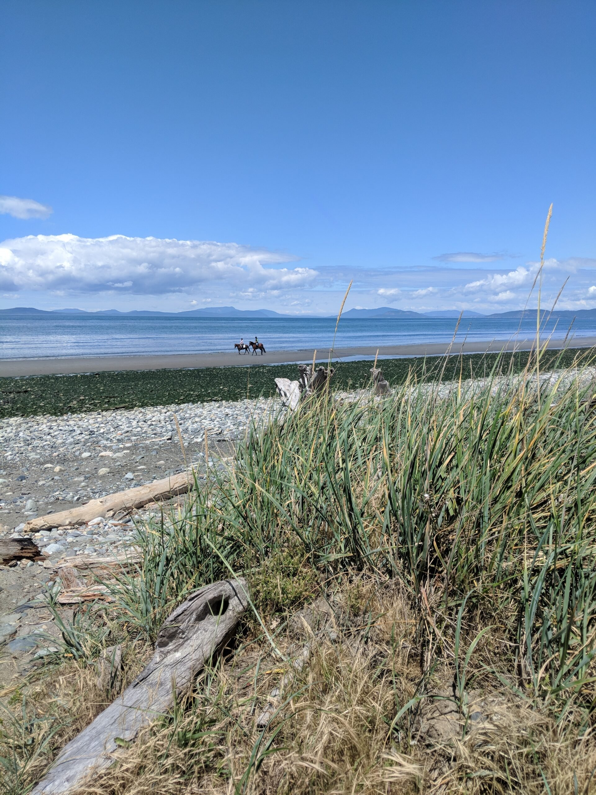 View from the beach at ft casey state park on whidbey island