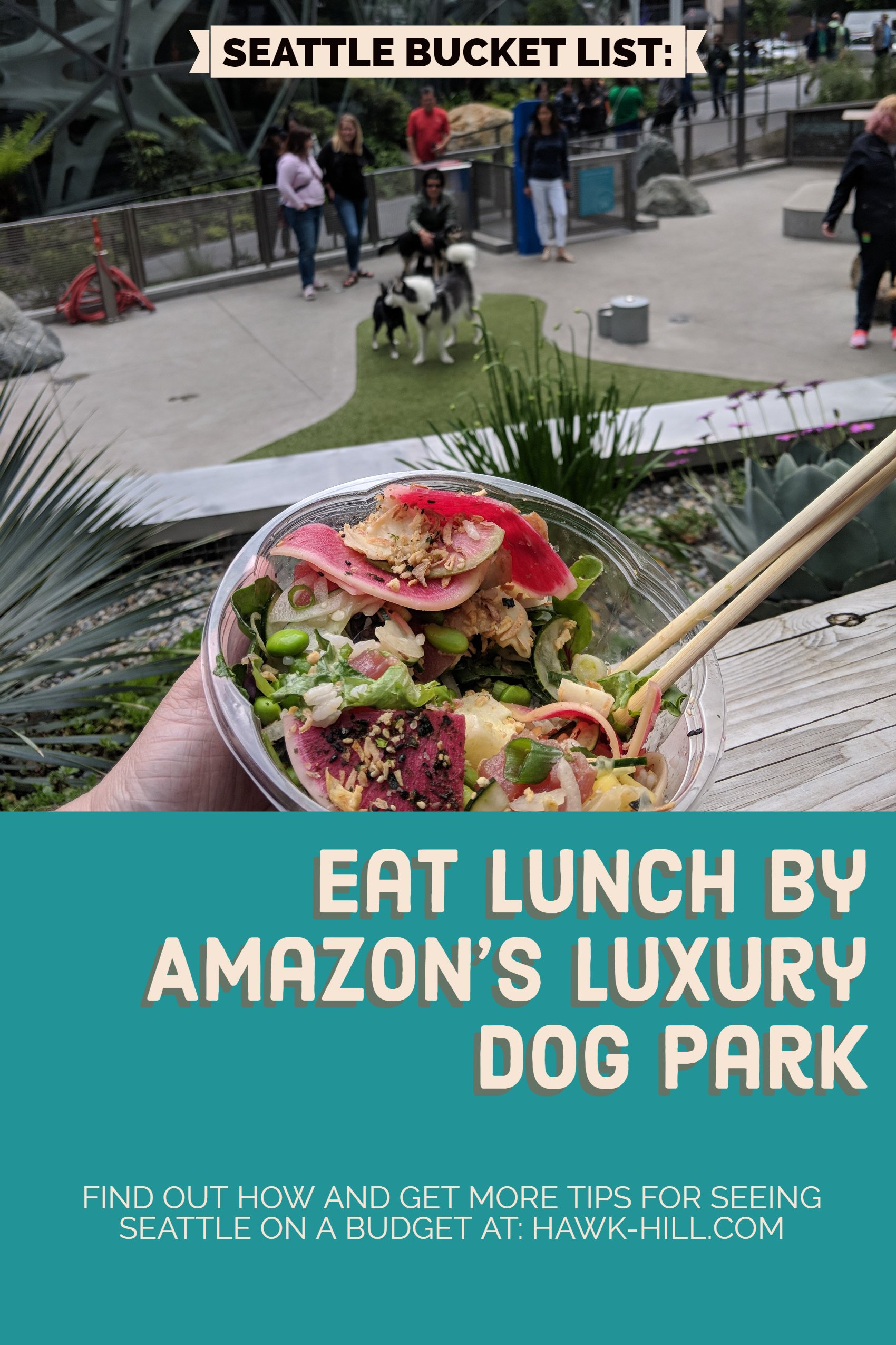 Hh lunch amazon dog park 1