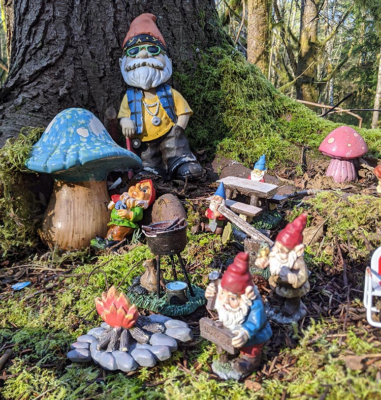 Visting the pnw hiking trail where gnomes roam about freely