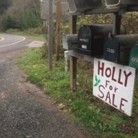 A roadside sign advertising Holly for sale in Bainbridge
