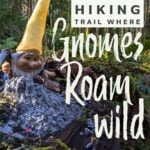 Visting the pnw hiking trail where gnomes rule the woods