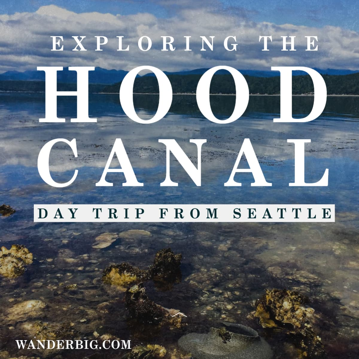 Escape to the calm of the Hood Canal, only a little over an hour from downtown Seattle. With this itinerary for a Hood Canal day trip you can explore the food, wildlife, and landscape of the Hood Canal while ending your day with a mini vacation and fire pit at my favorite resort.