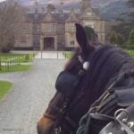 Arriving by carriage to the estate guarding the entrance of Killarney National Park is memorable and affordable