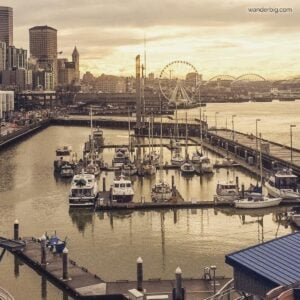 Seattle in the Rain: How To Enjoy Rainy Days as a Tourist Visiting Seattle