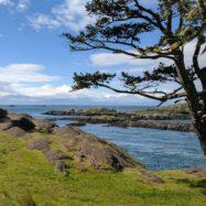 6 family-friendly things to do on lopez island in washington's san juan islands