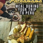 Wb pachamama meal tall
