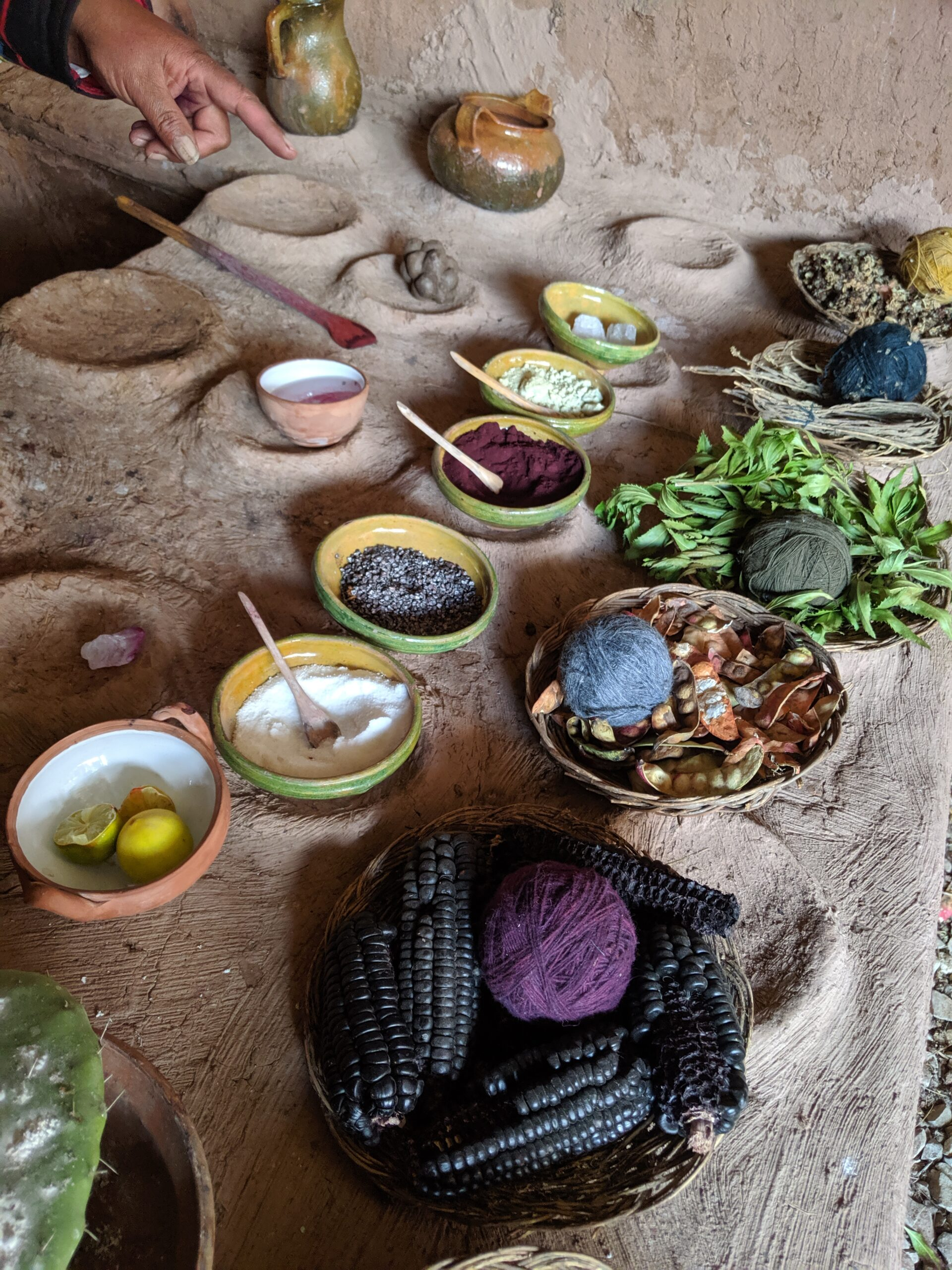 A table laid out with various natural substances used to die yarn made from alpaca fiber.