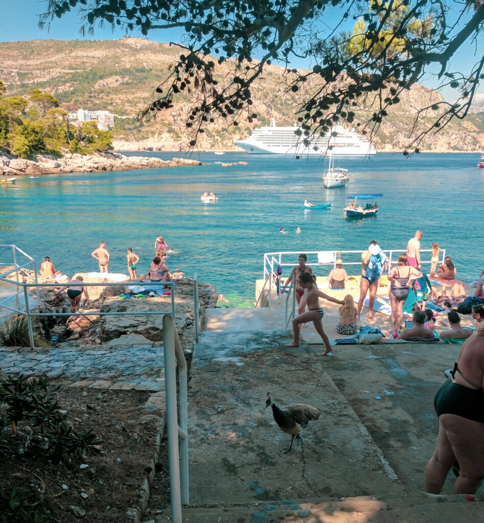 Tourists and locals swimming and resting on the rocks and docks of lokrum island, with a cruise ship in the background and a peacock in the foreground.