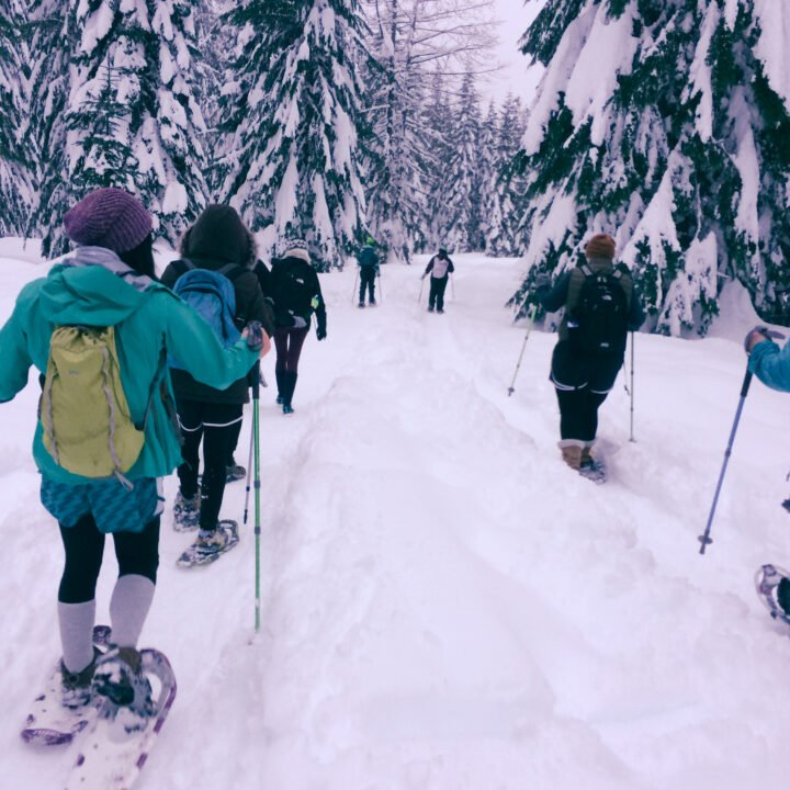 Snowshoers hiking into the woods just outside of Seattle Washington.