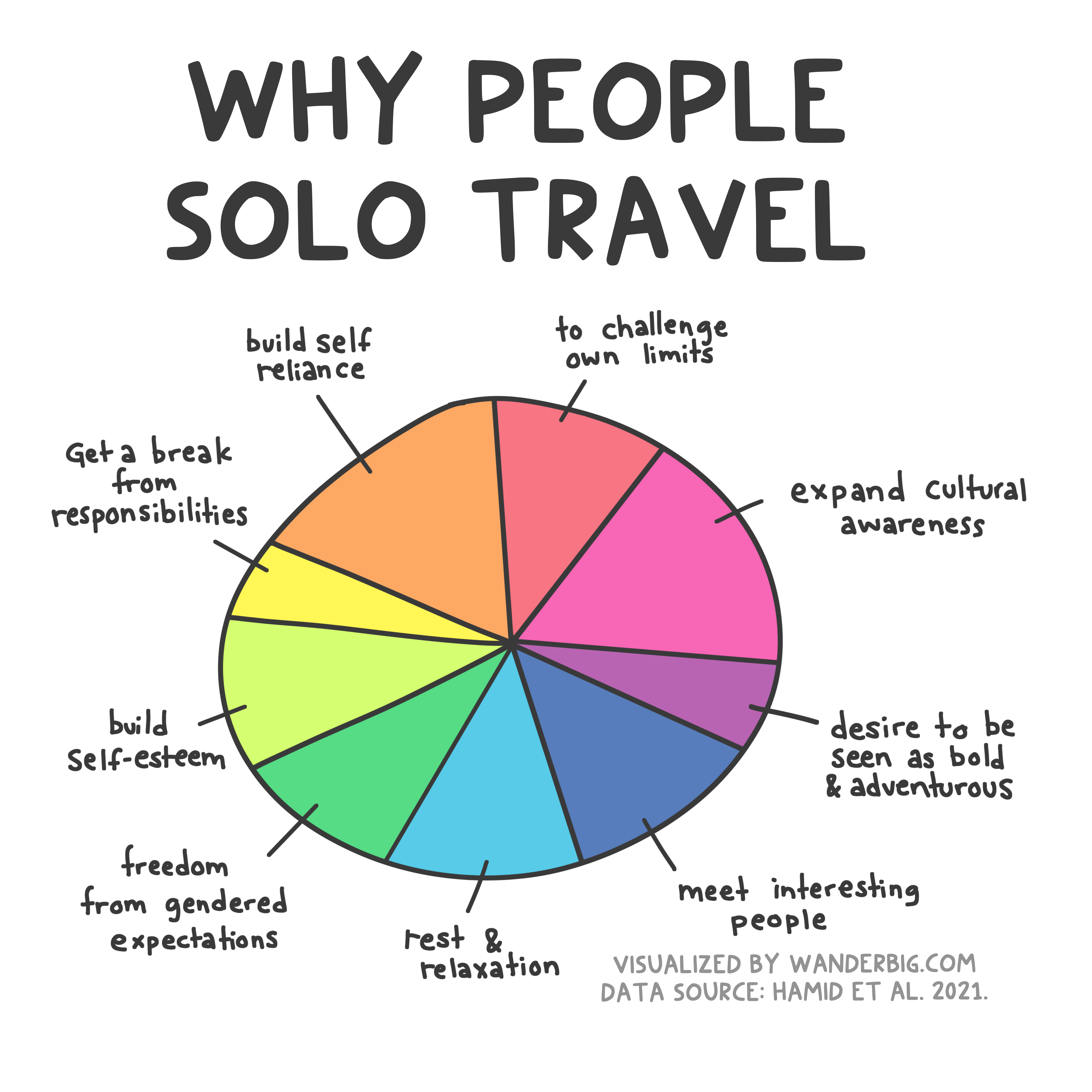 A pie chart image with text caption reading: why people solo travel.