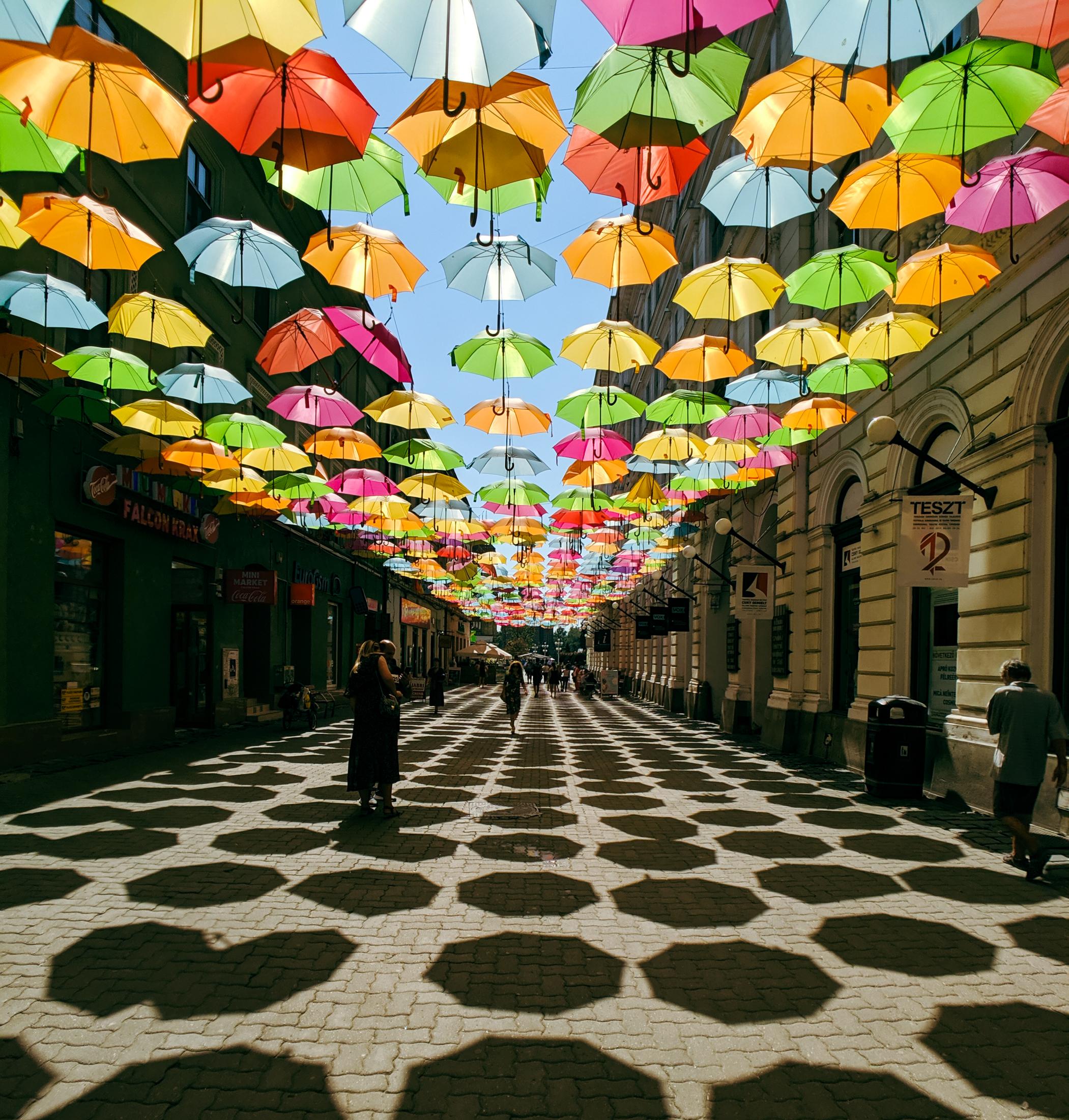Umbrellas covering a street in timisoara, romania.