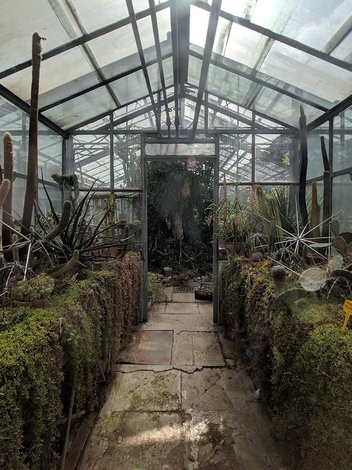 Hawk hill transylvania cluj botanical