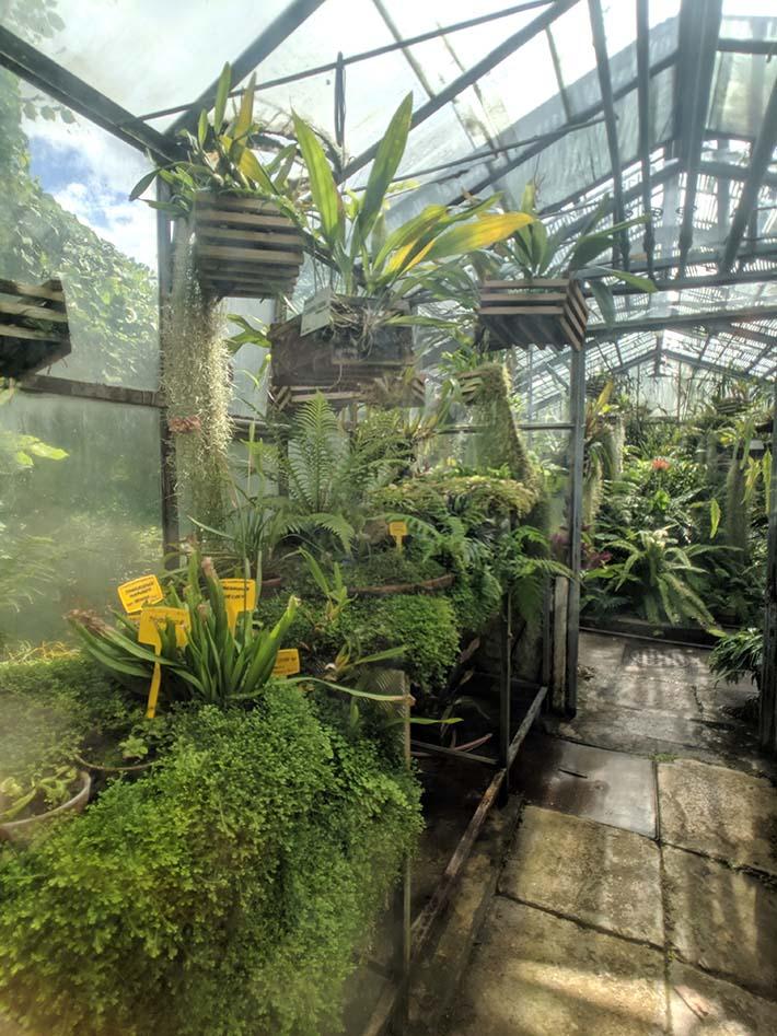A greenhouse in transylvania.